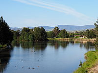 The northern end of Lake Tuggeranong