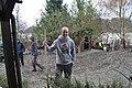 Volunteering (8620200320).jpg