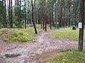 Węsiory near Kartuzy, Gothic burial site3.jpg