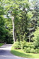 WPQc-185 Parc du Bois-de-Coulonge.JPG
