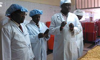 Embu County - Governor Martin Wambora tours a Macadamia plant in Murang'a County