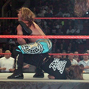 Boston crab - Chris Jericho with his Walls of Jericho (Elevated Boston crab)  on Shawn Michaels
