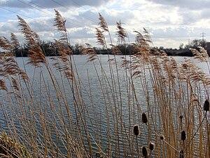 Walthamstow Wetlands - Walthamstow Reservoirs