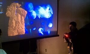 Kinect - A demonstration of a third-party use of Kinect at Maker Faire. The visualization on the left, provided through Kinect, is of a user with a jacket featuring wearable electronic controls for VJing.