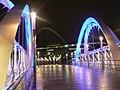Wembley, Wembley Stadium Station footbridge - geograph.org.uk - 665128.jpg