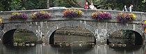 Westport bridge IE.jpg