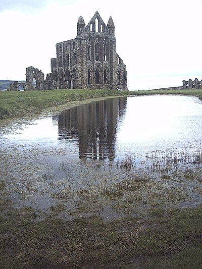 Whitby Abbey England, one of hundreds of European monasteries destroyed during the Reformation. Whitby abbey photography.jpg
