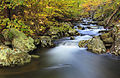 Whiteoak Canyon (22525713905).jpg