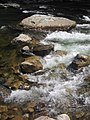 Whitewater on Loyaslock Creek in Worlds End State Park.jpg