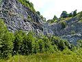 WikiProjekt Landstreicher Steinbruch an der Schanz 12.jpg