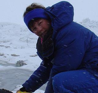 Michelle Rogan-Finnemore American geologist