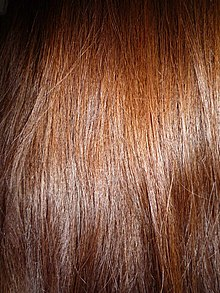 Brown Hair Wikipedia