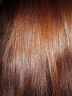 Brown hair Human hair color