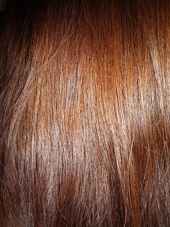 File Woman With Long Brown Hair Close Up View Jpg