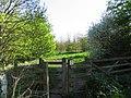 Woodland Trust - geograph.org.uk - 165780.jpg
