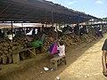 Yams from Akim Market Calabar1.jpg