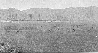 Battle of Yongsan - Image: Yongsan 1950