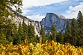 Yosemite Valley-35.jpg
