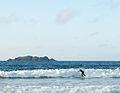 Young surfer at Harlyn Bay - geograph.org.uk - 1294344.jpg