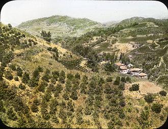 Gongju - Young trees, Kongju, 1908-1922