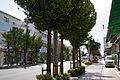 Yui Road03s3s4440.jpg