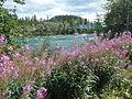 Yukon (5996427646).jpg