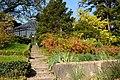 Zürich - Alter Botanischer Garten IMG 0688.JPG