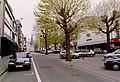 Zottegem Heldenlaan Gekandelaarde platanen - 190544 - onroerenderfgoed.jpg