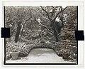 """Las Tejas,"" Oakleigh Thorne house, 170 Picacho Lane, Montecito, California. Terrace LCCN2008679214.jpg"
