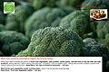 """a tasty broccoli"".jpg"