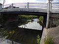 'Hogneau pont.JPG