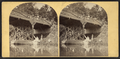(Viewers above and below the bridge, Sharon Springs, from Robert N. Dennis collection of stereoscopic views.png