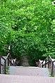 Западная часть парка Нивки. Фото 10.jpg