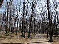 Лефортово - panoramio - Павел Котов (4).jpg
