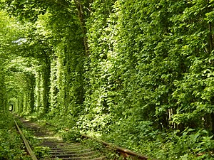Tunnel of Love (railway)
