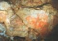 Рисунок лошади, мамонта, носорога. Пещера Шульган-Таш.png