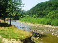 Річка Мізунка влітку.jpg