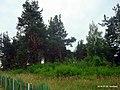 Старое кладбище - panoramio (2).jpg