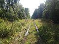 Старый Сибирский тракт - panoramio (6).jpg