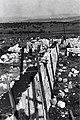 אלונים - יום העליה לאלונים הקמת חומת המגן-JNF026684.jpeg