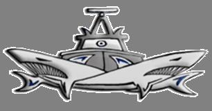 logo of the 916 Squadron - israeli navy.