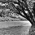 ลำน้ำแม่แจ่ม ทางไปออบหลวง - panoramio.jpg