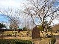 万葉の森公園 - panoramio.jpg