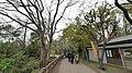 井の頭公園 - panoramio (57).jpg