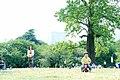初夏の新宿御苑 - panoramio.jpg