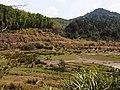 山间湿地 - Mountain Marsh - 2015.02 - panoramio.jpg