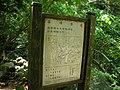 行義路至陽明山健步走 - panoramio - Tianmu peter (36).jpg