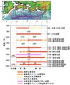 過去に発生した南海トラフ地震の震源域の時空間分布.png