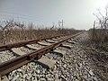 青朐铁路 2021-03-07 2.jpg