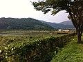 장성 상무대 ^2 저수지 - panoramio.jpg